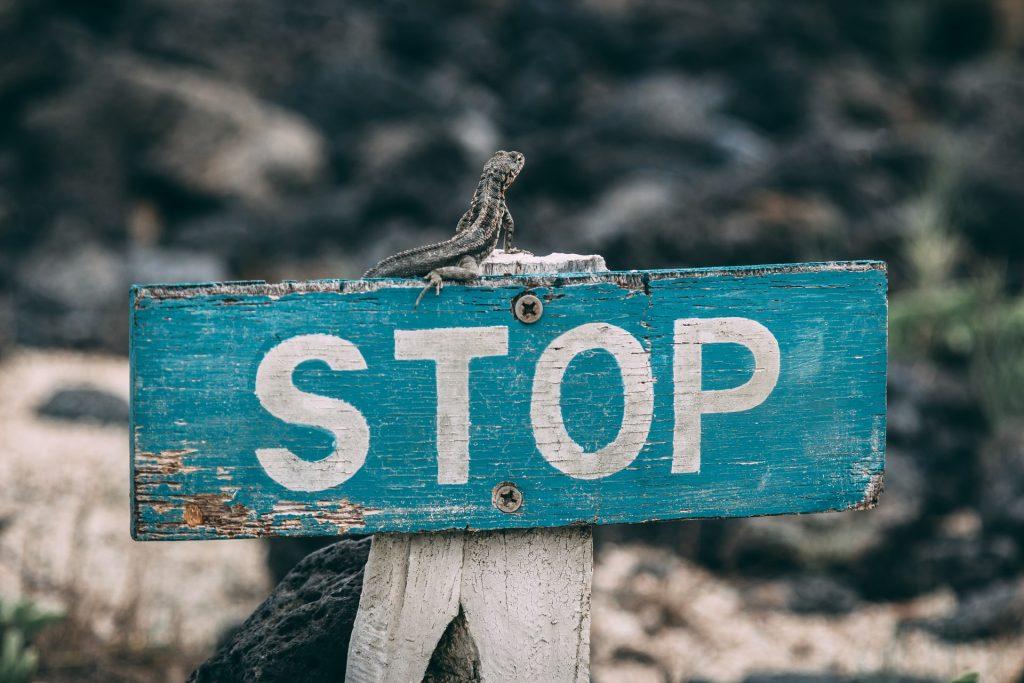 5 Common Financial Sins Veterinarians Should Avoid